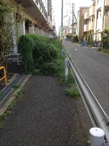 0916baraki10_480x640.jpg
