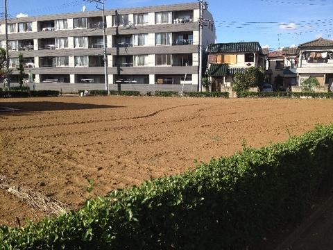 0916baraki4_640x480.jpg