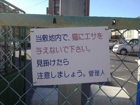 0916baraki6_640x480.jpg